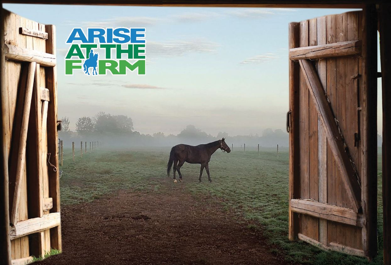 Your Invitation to Support ARISE at the Farm!